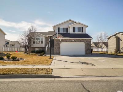 Davis County Single Family Home For Sale: 1683 N 2475 W