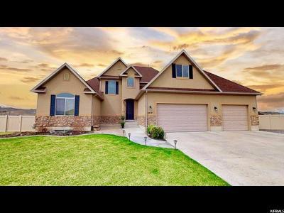 Utah County Single Family Home For Sale: 2479 E Prairie View Drive