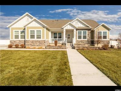 Utah County Single Family Home For Sale: 2244 W Thomas St