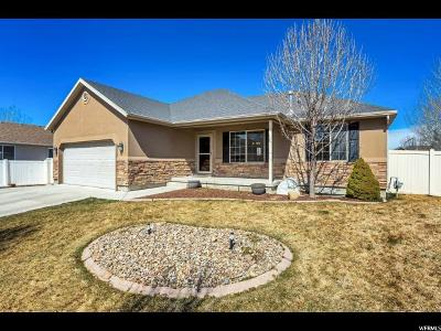 Utah County Single Family Home For Sale: 1991 E Shadow Dr