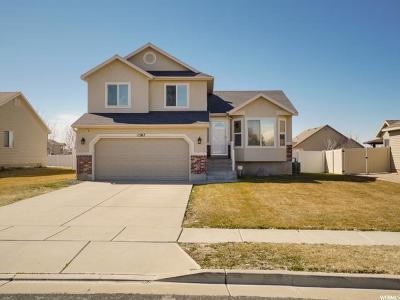 Davis County Single Family Home For Sale: 1507 N 2340 W