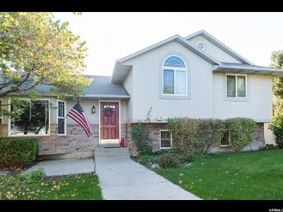 Orem Single Family Home For Sale: 810 S 1680 W