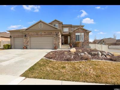 Salt Lake County Single Family Home For Sale: 13499 S Muhlenburg Way W