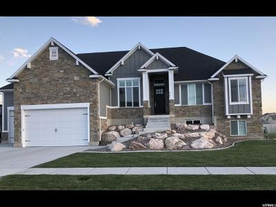 Weber County Single Family Home For Sale: 2797 W 2050 S