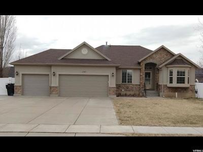 Davis County Single Family Home For Sale: 1147 N 1230 W