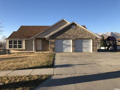 Perry Single Family Home For Sale: 710 W 2650 S