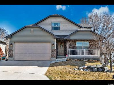 Willard Single Family Home For Sale: 226 E 660 S