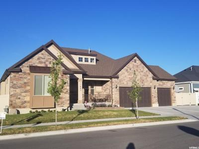 South Jordan Single Family Home For Sale: 11683 S River Front Pkwy