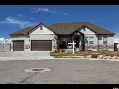 Heber City Single Family Home For Sale: 2500 S 260 E