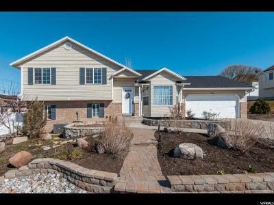 Lehi Single Family Home For Sale: 2580 N 600 W W