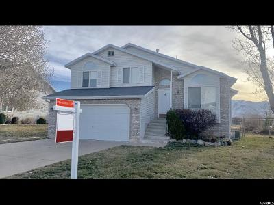 Layton Single Family Home For Sale: 1344 N 2725 W