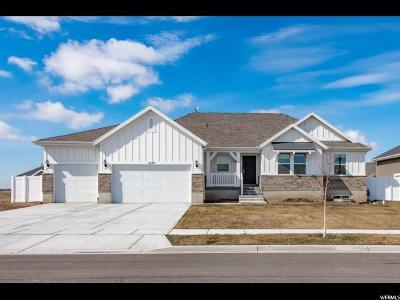Clinton Single Family Home For Sale: 2249 N Snowy Crane Dr