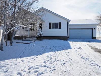 Eagle Mountain Single Family Home For Sale: 1902 E Canary Way