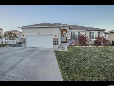 Tooele Single Family Home For Sale: 895 N Flint Cir