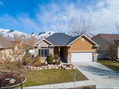 Stansbury Park Single Family Home For Sale: 5520 W Windsor Way S