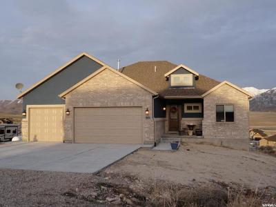 Stockton Single Family Home For Sale: 671 S Cactus Rose