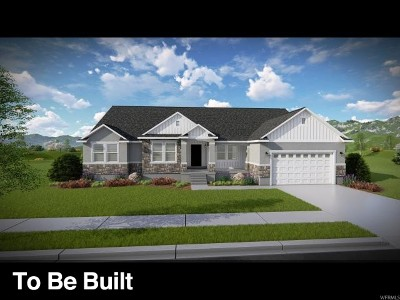 Eagle Mountain Single Family Home For Sale: 4797 N Mount Nebo Dr #202