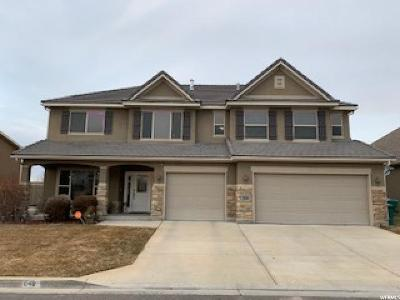 Lehi Single Family Home For Sale: 1878 W Grays Pl S