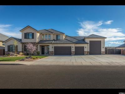 St. George Single Family Home For Sale: 3062 E 2250 St S