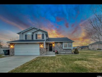 South Jordan Single Family Home For Sale: 9392 S Tanya Ave