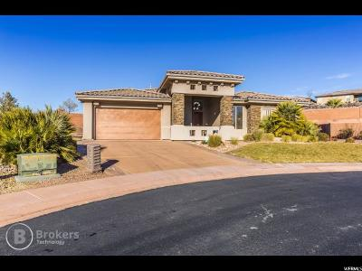 St. George Single Family Home For Sale: 1795 N Snow Canyon Pkwy #3