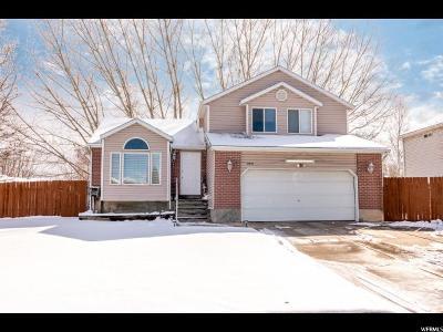 West Jordan Single Family Home For Sale: 8473 S 1555 W