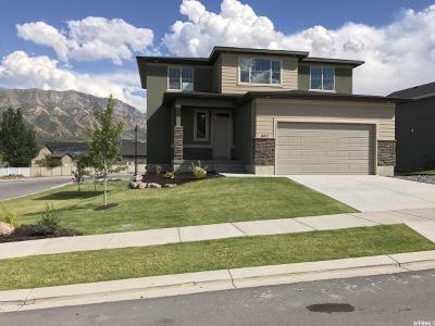 Santaquin Single Family Home For Sale: 467 Travertine Way #SPEC