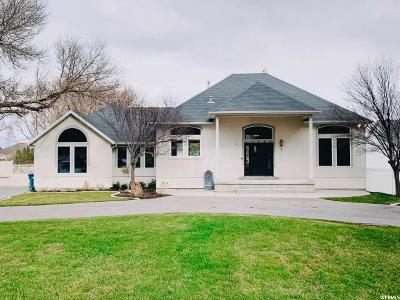 Riverton Single Family Home For Sale: 11989 S 3600 W