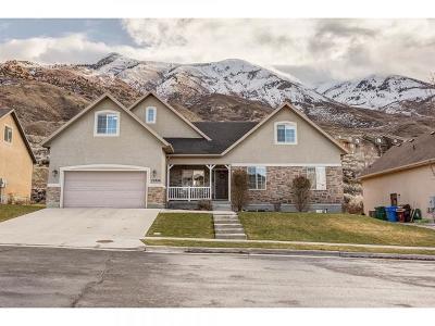 Cedar Hills Single Family Home For Sale: 10356 N Avondale Dr W