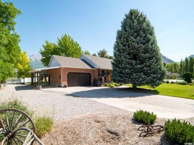 Highland Single Family Home For Sale: 4922 W 11000 N