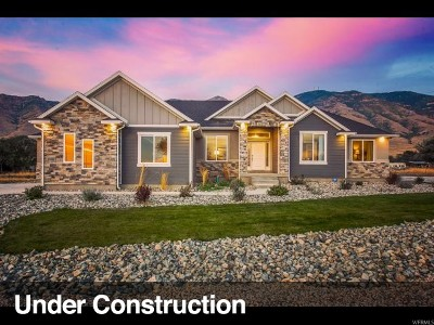 Tooele County Single Family Home For Sale: 7230 N Blue Moon Dr E #132