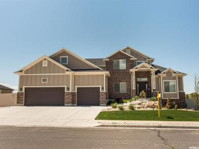 Weber County Single Family Home For Sale: 2007 N 4900 W