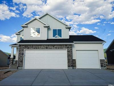 Tooele County Single Family Home For Sale: 1396 N Providence Way #203