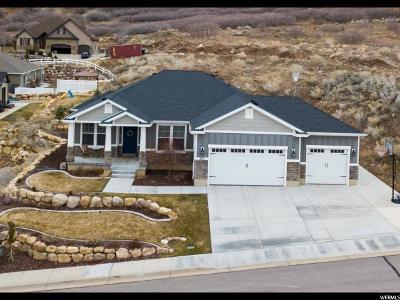 Utah County Single Family Home For Sale: 347 S 1150 E