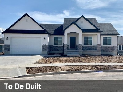 Utah County Single Family Home For Sale: 1293 W 250 S #21