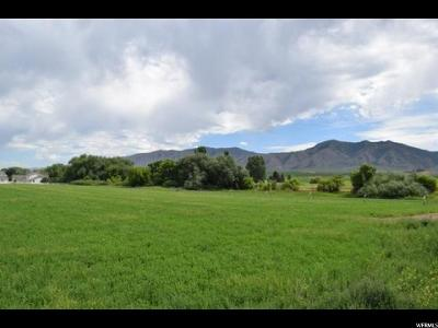 Paradise Residential Lots & Land For Sale: 225 W 8600 S