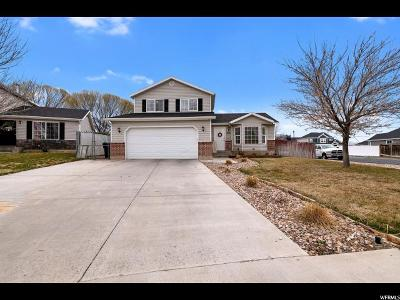 Spanish Fork Single Family Home For Sale: 1506 E 910 S
