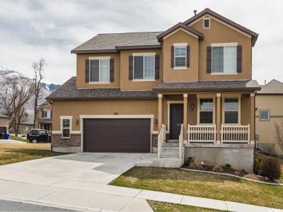 Farmington Single Family Home For Sale: 803 W Foxglove Rd N
