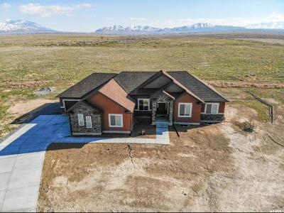 Tooele County Single Family Home For Sale: 680 Black Stallion Ct
