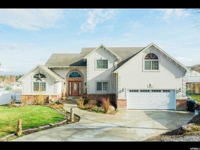 Richmond Single Family Home For Sale: 161 E 400 S