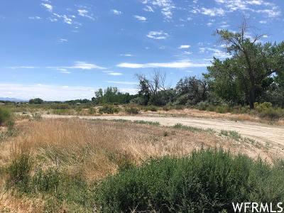 Residential Lots & Land For Sale: 979 W 1100 S