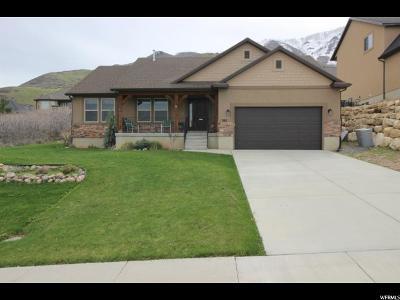 Santaquin Single Family Home For Sale: 387 S 1000 E