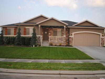 Layton Single Family Home For Sale: 230 S 3475 W
