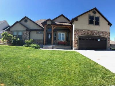 Nephi Single Family Home For Sale: 442 E 350 S