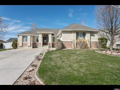 Syracuse Single Family Home Backup: 1332 W 2325 S