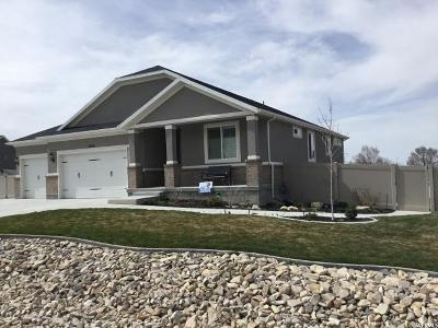 Tooele County Single Family Home For Sale: 7979 N Cobblerock E