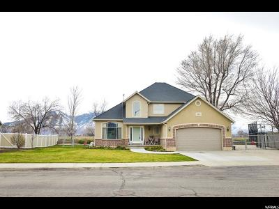 Springville Single Family Home Backup: 172 E Santa Fe Dr