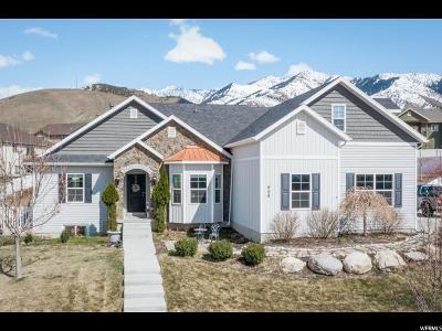 Hyde Park Single Family Home For Sale: 408 N 700 E