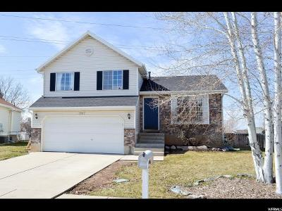 Davis County Single Family Home For Sale: 1987 S Katies Way W