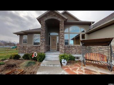 Tooele County Single Family Home For Sale: 5437 Horseshoe Dr